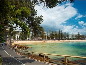 manly lto shelly beach 800x600
